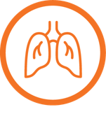 bronchiolitis icon