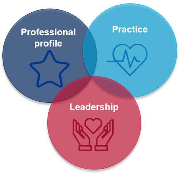 2020 and beyond: focus areas: professional practice, practice amd Leadership