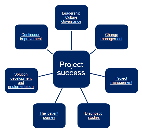 The seven elements essential to project success.